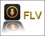 flv/f4v格式转换器